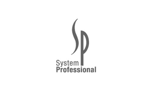 systemprofessional